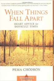 book_when_things_fall